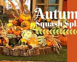Autumn Squash Splash – DIY Network