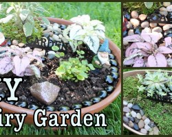DIY Fairy Garden!