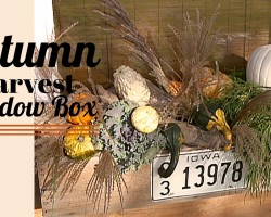How To Make An Autumn Harvest Window Box – DIY Network