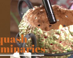 Squash and Gourd Luminaries – DIY Network