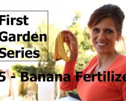 First Garden Series # 5 How to Make Banana Peel Fertilizer