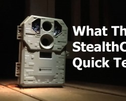 What The Kale? StealthCam Test