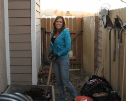 Hot Composting 101 –  Part 1 – Why no heat?