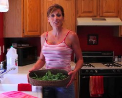 Preserving Your Harvest- Drying Basil