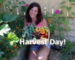 Harvest Day and How to Oven Roast Veggies – Quick and Simple!