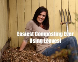 The Easiest Composting Ever – Using Leaves!