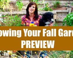 Growing Your Fall Garden – Preview