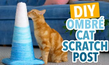 DIY Ombré Cat Scratching Post – HGTV Handmade