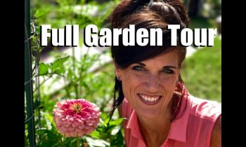 Full Summer Garden Tour with DRONE footage – July, 2017