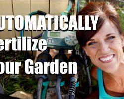 How I'm Automatically Fertilizing My Garden with Drip Irrigation