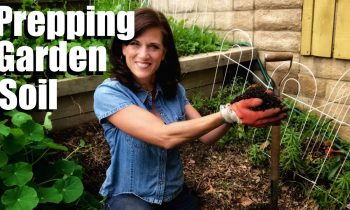 How to Prepare Your Garden Soil for Planting Vegetables in 3  Easy Steps // Spring Garden Series #8