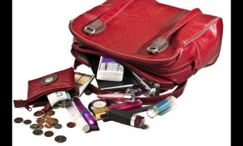Purse / Handbag Clean-Out
